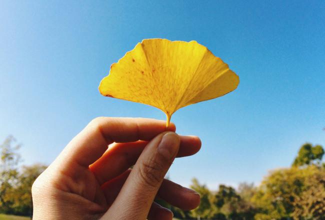 ParcoAmendola_Autunno_Autumn_in_Modena_MyModenaDiary_Cover