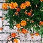 Relax_e_beauty_a_modena_consigli